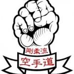 GoJu-Ryu, Proud Daddy, Green Belt, Yellow Belt