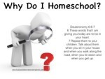 Why Homeschool?